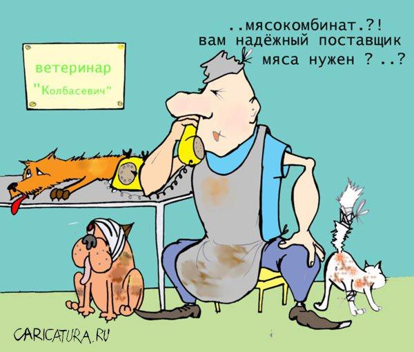 Прикольные поздравления ветеринарам