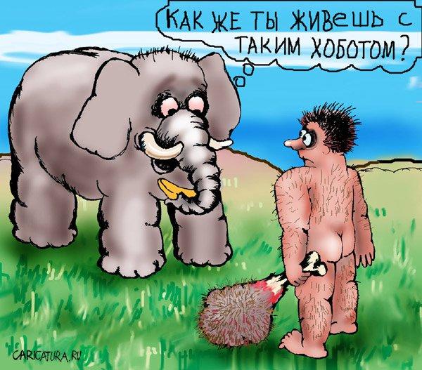 Карикатура «Хобот», художник Алла Сердюкова. В своей авторской ...