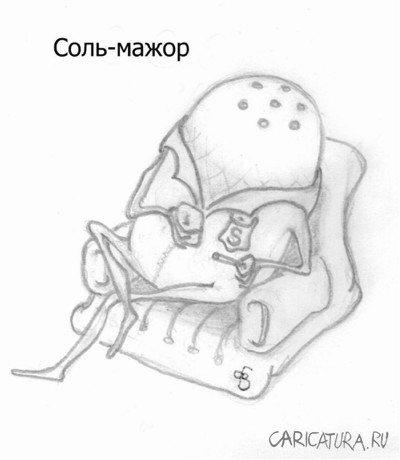 Виктор Бибиков «Соль-мажор»