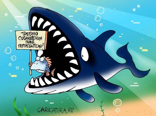 Картинки по запросу акула карикатура