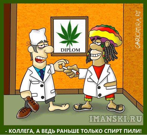 Карикатуры про коноплю на сегодня какие планы жжем марихуану