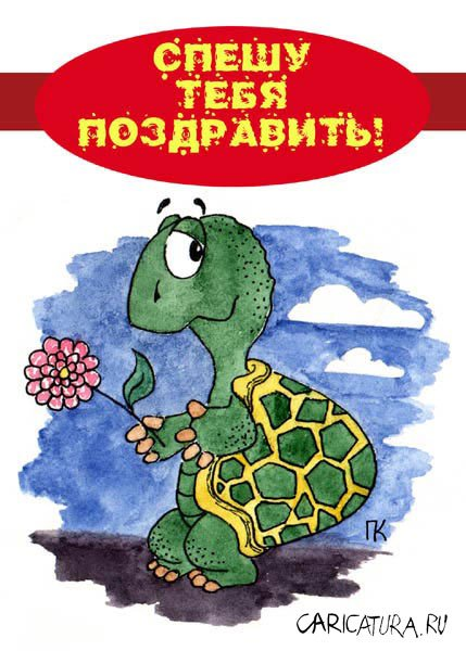 Поздравления от черепашке в день рождения