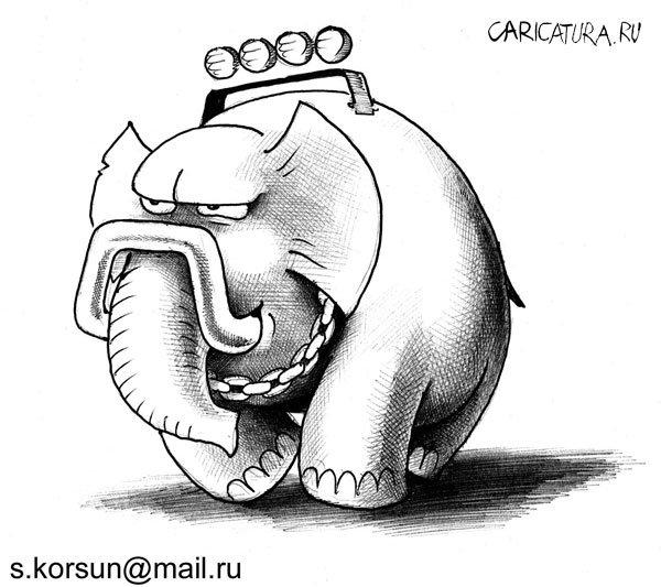 Картинки по запросу слон карикатура