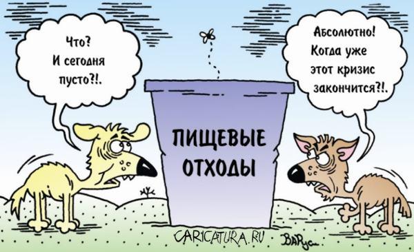 Карикатура «Кризис», Руслан Валитов. В своей авторской подборке. Карикатуры, комиксы, шаржи