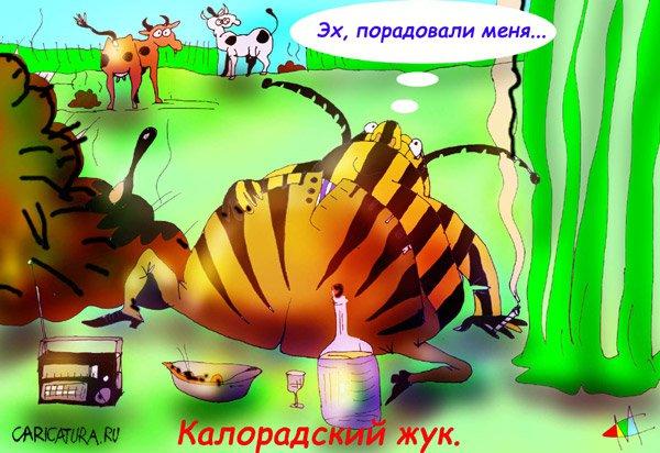 рисунок жука: