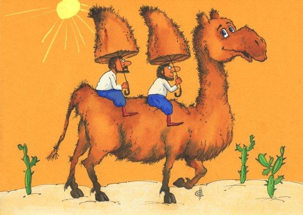 Смешные рисунки верблюд