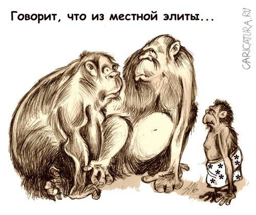 """Карикатура """"Элита"""", Вячеслав Шляхов"""