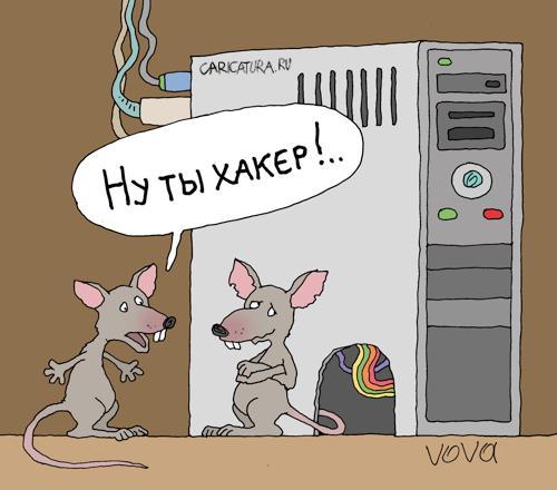 Картинки по запросу карикатура о хакерах